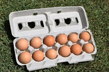A Dozen Brown Eggs In A Carton