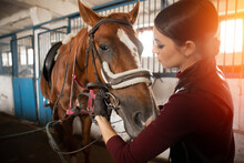 Young Woman Rider Puts On Hors...