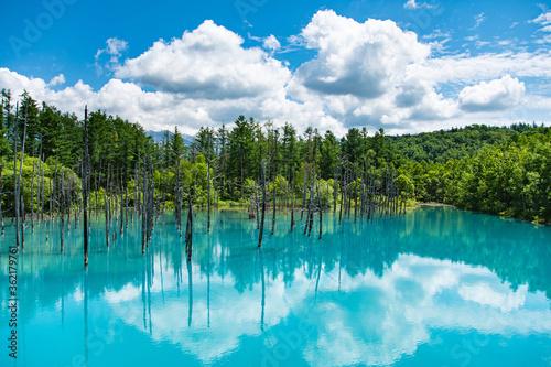 Obraz 7月の青い池夏雲リフレ - fototapety do salonu