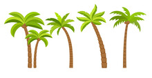 Palm Tree Vector Island Coconu...