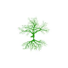 Minimalist Creative Tree Logo And Yoga Vector