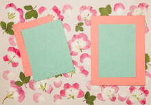 Page From An Old Photo Album. Scrapbooking Element Decorated With Leaves, Flowers And Petals Flowers. For Cards, Invitations Und Congratulations. Use In Scrapbooking, Greetings
