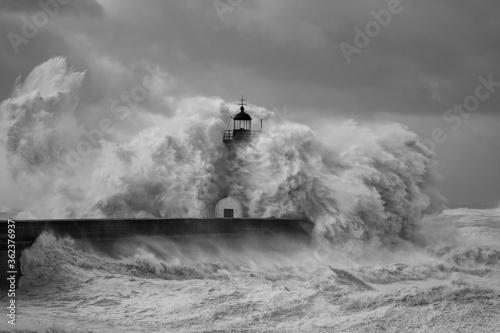 Fototapety, obrazy: Dangerous windy Coast