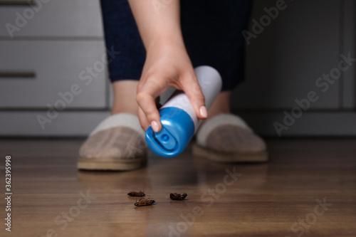 Fototapeta Woman spraying insecticide onto cockroaches, closeup. Pest control obraz