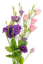 Vertical Shot Of A Vase Filled...