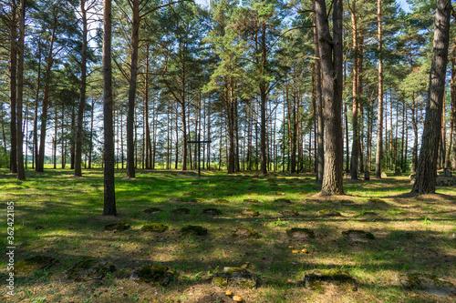 World War I German cemetery in Belarus © Valmond