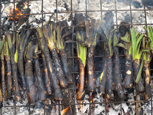 Valokuva Catalan type of green onion grilled over a hot fire