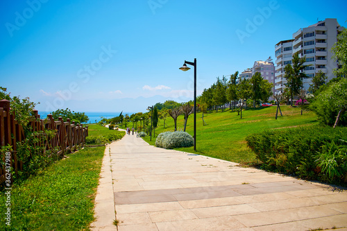 Park by the sea with beautiful greenery, trees and shrubs Wallpaper Mural