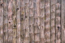 Close Up Texture Background Shot Of An Old Grayed Out Weathered Vertical Wood Fence Made With Rough Sawn Scraped Planks With Knots.