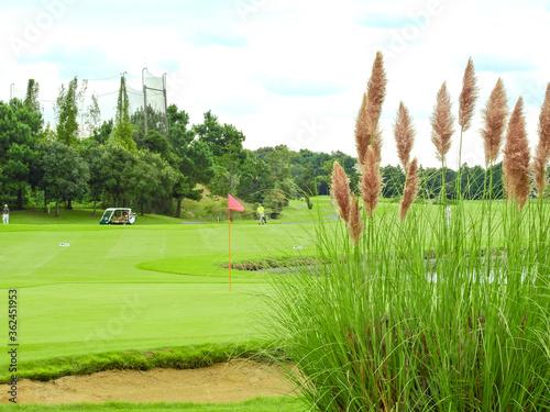 Foto ゴルフは良き仲間、厳しいライバルがいてこその楽しさがあります