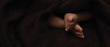 Tiny Feet Newborn Baby, Dark B...