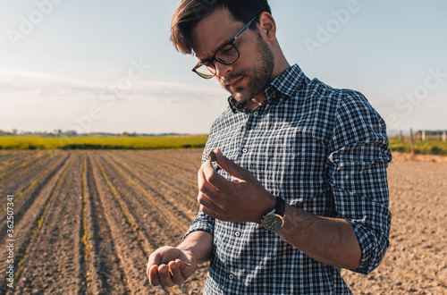 Fotografering Young farmer in corn field examining soil quality.