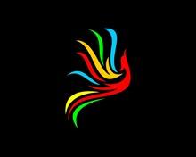 Rainbow Flying Phoenix
