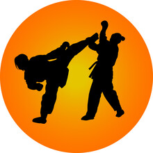 Two Girls Fight In Karate Silh...