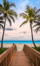 Wooden Boardwalk Access To Hollywood Beach With Swaying Coconut Palm Trees On A Beautiful Summer Day In Florida, USA.