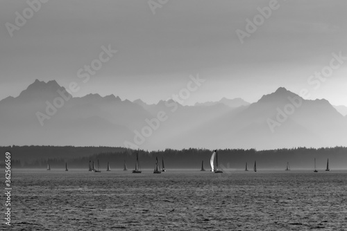 Photo Sailboats Sailing In Elliott Bay Near Seattle With The Olympic Mountains In The Distance