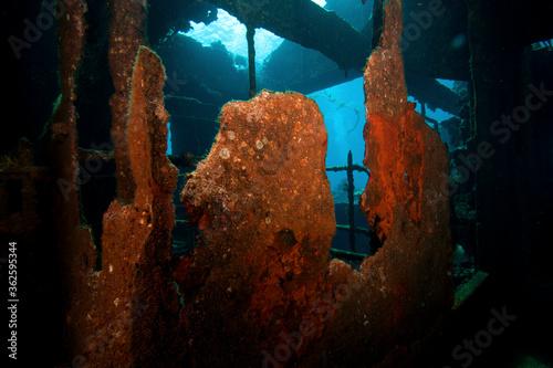 Fotografie, Obraz Wrecks Of Abu Nuhas