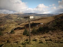 Scenic View Of Sign Post In Fi...