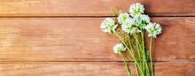 Wildflowers On A Wooden Backgr...