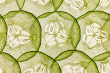 Full Frame Shot Of Thin Slices Of Cucumber Lit From Behind