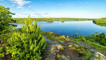 Swedish Lake In Early Summer S...