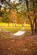 Hammock in the autumnal garden