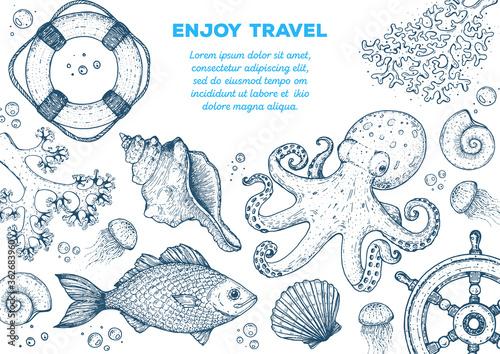 Sea animals hand drawn collection Fototapeta