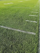 High Angle View Of Soccer Field Stripes