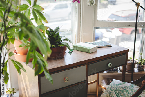 Desk in bright study with books and plants