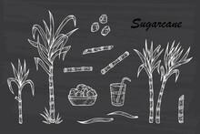 Hand Drawn Sugar Cane Set. Sug...