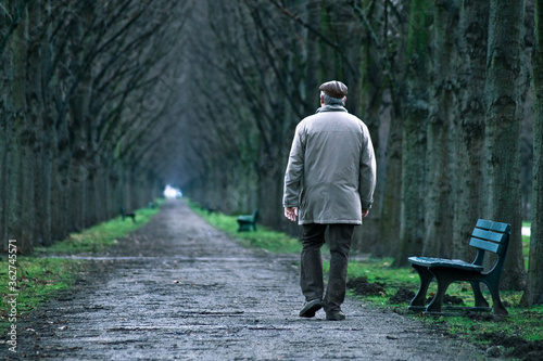 Photo Rear View Of Old Man Walking On Footpath