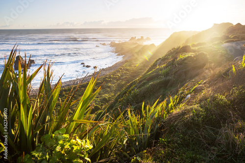 Fototapeta New Zealand coast obraz