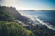 canvas print picture - Manly Beach coastal cliffs, Sydney, Australia