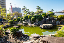 NAGASAKI, Japan. Small Green Pond Next To Fukusai-ji Buddhist Temple In Nagasaki, With Green Water And Traditional Japanese Garden Trees And Plants.