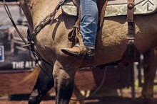 Boot In The Stirrup