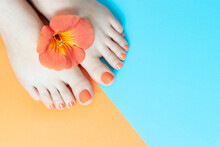 Female Legs With A Beautiful Orange Pedicure With Flower On Blue And Orange Background