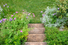 Look Down From Some Concrete Stairs Onto The Beautiful Blooming Blue And Purple Flowers, The Green Plants And The Grass In A Summer Garden. Seen In Germany In June.