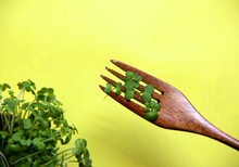 Fresh Micro Greens And Fork With Growing On Yellow Background. Healthy Eating Concept Of Fresh Garden Produce Organically Grown As A Symbol Of Health. Vitamins From Nature. Flat Lay, Copy Space.