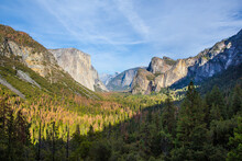The Yosemite Valley At A Sunny...