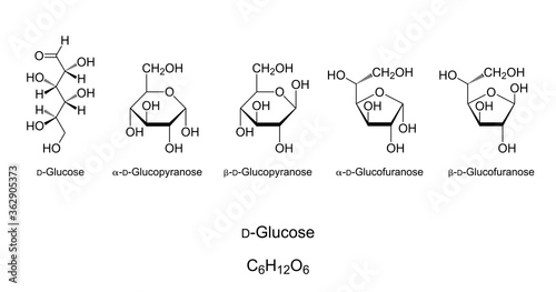 Glucose, monosaccharide, chemical structure Canvas Print