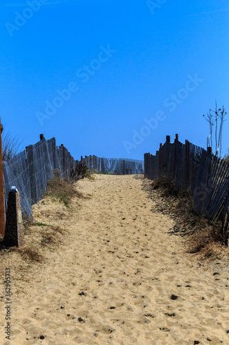 Beach Walkway Wallpaper Mural