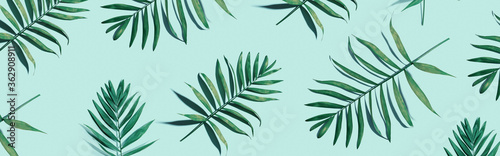 Tropical palm leaves from above - flat lay - 362908911