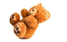 Soft Teddy Bear Isolated