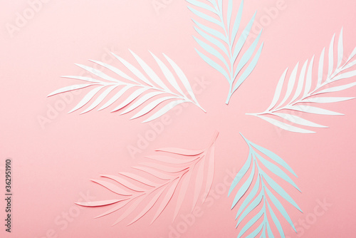 Fototapeta top view of white, pink and blue paper cut palm leaves on pink background obraz
