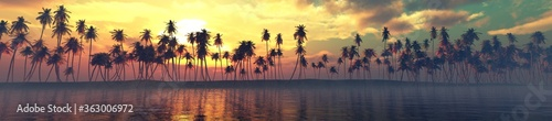 Photo Palm trees over the water, a panorama of palm trees in a row at sunset by the se