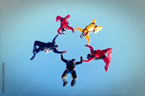 Fototapeta Skydivers holding hands up side down
