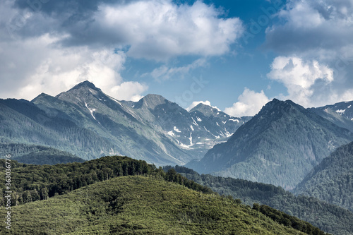 Forest with Fagaras Mountains in the background, Romania.