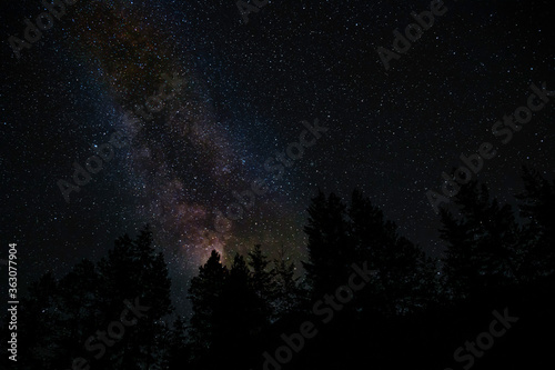 Fotografia Astro Photography With Milky Way Above Forest