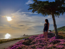 Woman Standing On Purple Flowers At Beach During Sunset