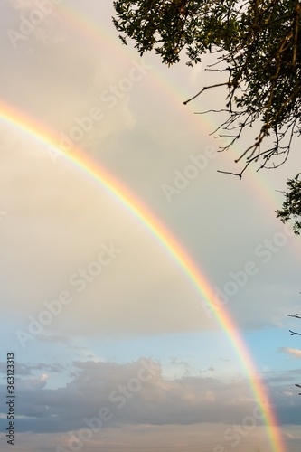 Vertical low angle shot of a double rainbow in the sky captured from a field
